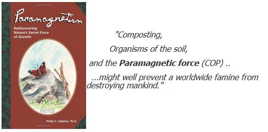 Philip S. Callahan, Paramagnetism